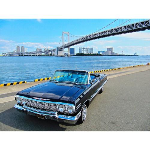 ImpalaRainbow_Insta